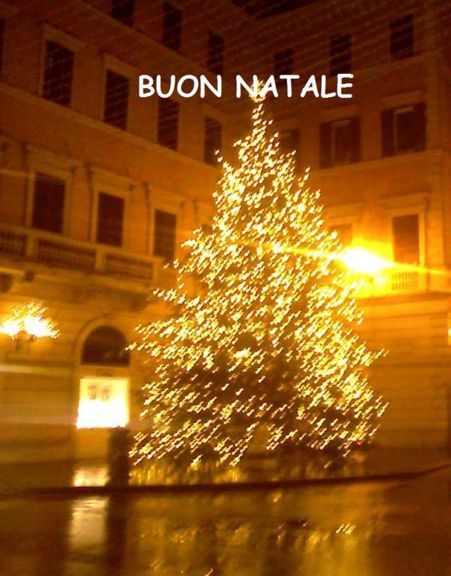 Auguri Di Buon Natale A Lei E Famiglia.I Miei Piu Semplici Ma Sinceri Auguri Di Buon Natale Il Blog Di Roberto Di Napoli